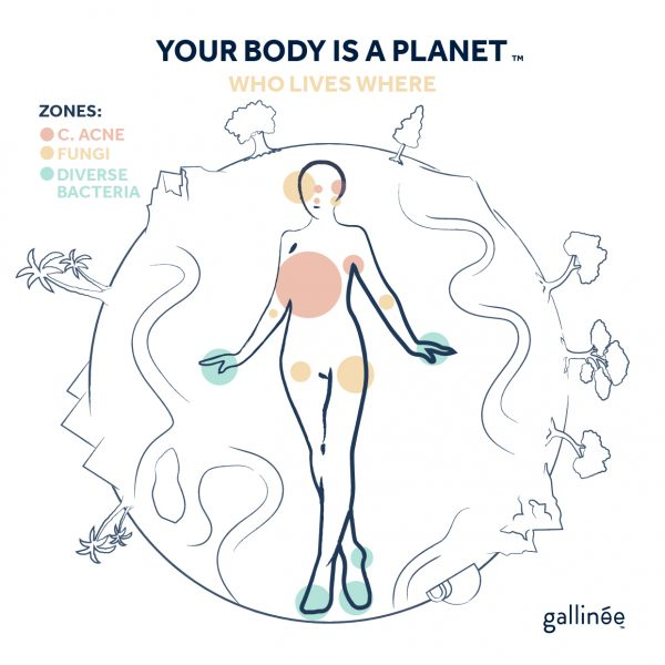 Gallinee Your body is a planet